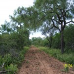 ranch-investment-southern-connections